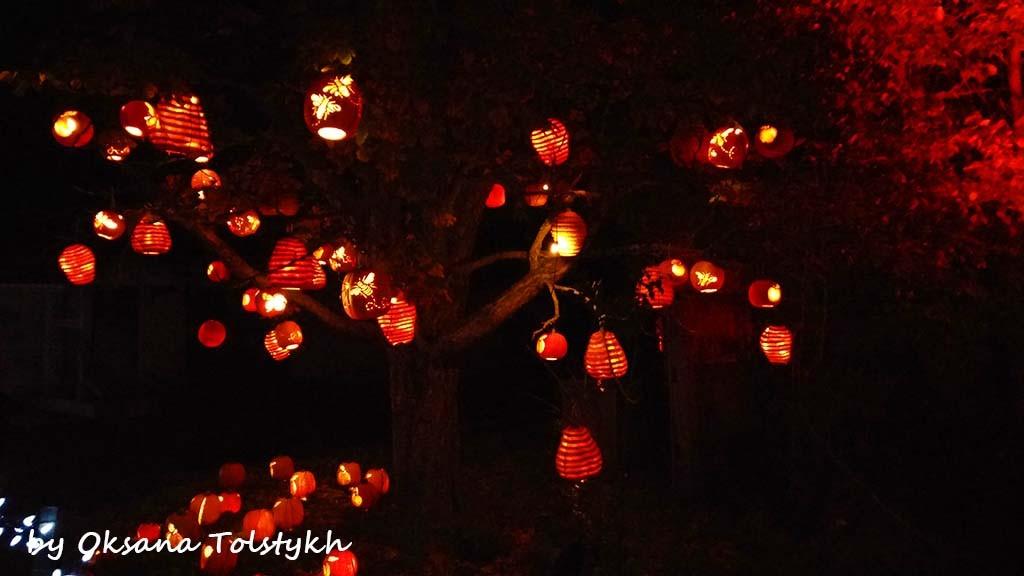 Pumpkinferno11
